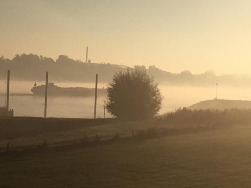 de Rijn 's morgensvroeg in de herfst