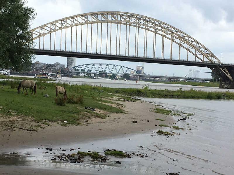 de drie bruggen van Nijmegen