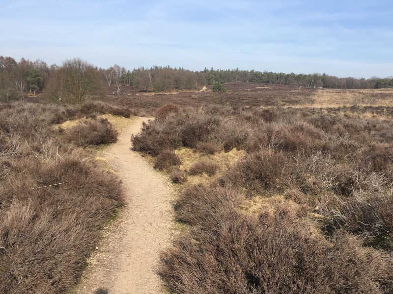 Wandelroute Groesbeek Mookerheide